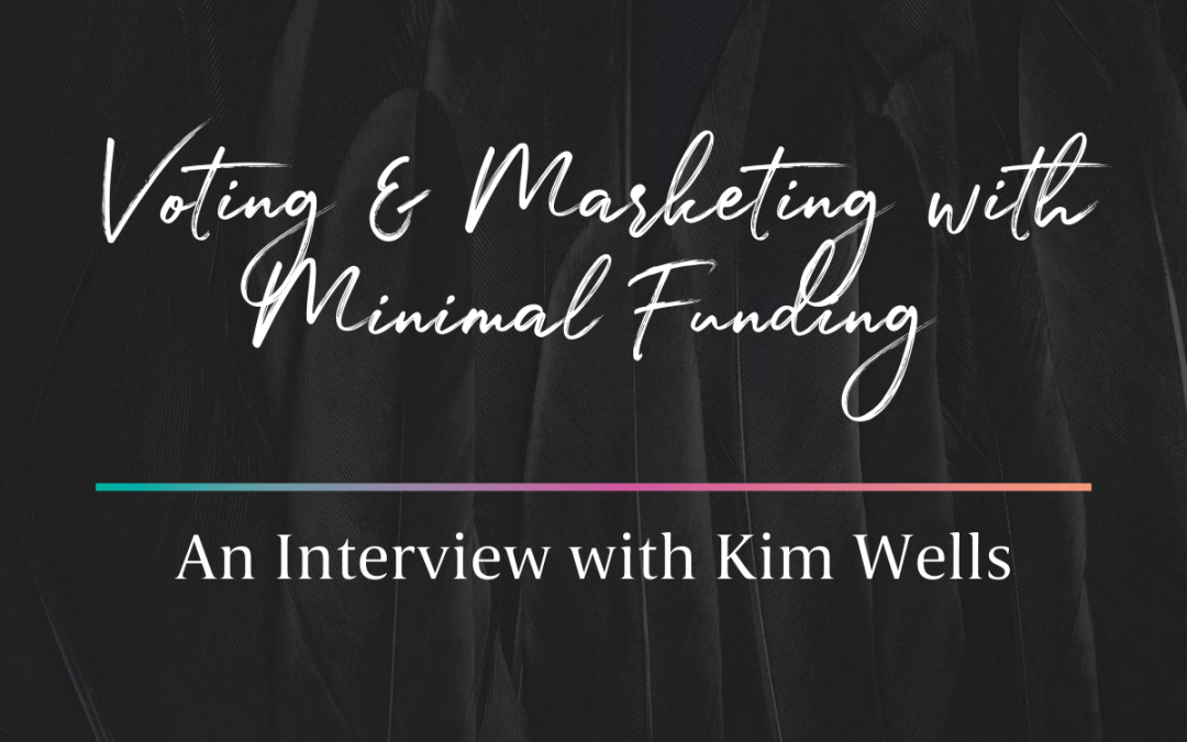Voting, Political Nonprofits, and Marketing with Minimal Funding – Interview with Kim Wells of LWV DE